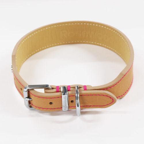 Hundehalsband-Schnalle