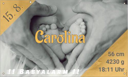Babybanner Hände